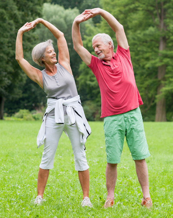 how to start senior exercise program